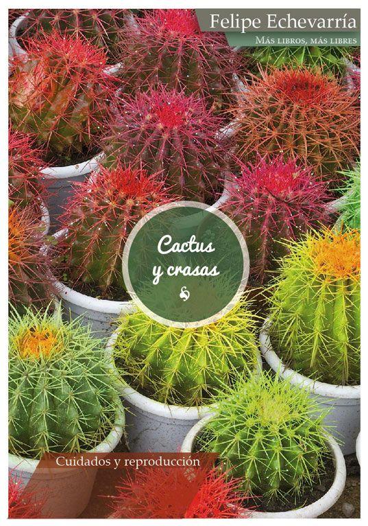 Todo sobre tus cactus y crasas la editorial independiente for Informacion sobre el cactus